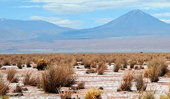 San Pedro de Atacama Uyuni Tours